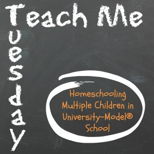 Teach Me Tuesday- Homeschooling multiple children
