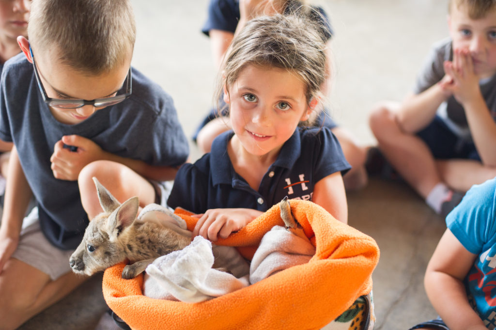Kindergarten Student holding a baby kangaroo
